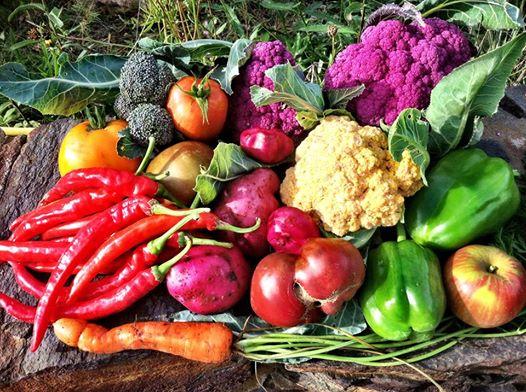 2014 vegetables